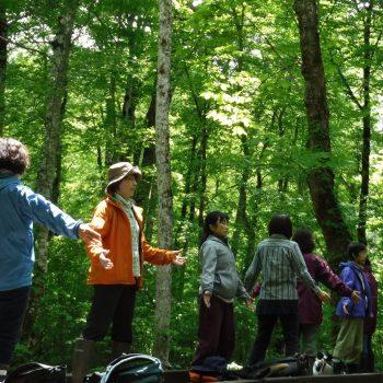 樹林気功体験