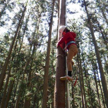 森の中で木こりツアー