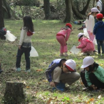 成美小学校里山探検2016.10.31