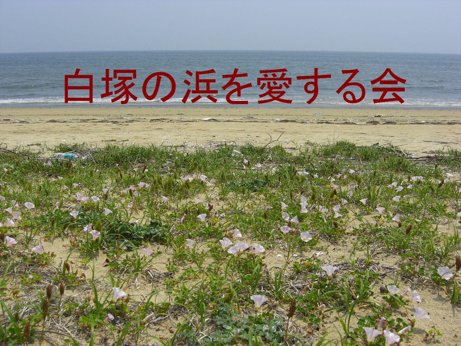 白塚の浜を愛する会